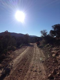 Moabtrail1